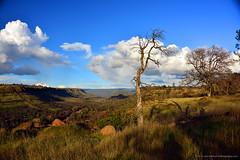 "ButteCreekCanyon_04 (DonBantumPhotography.com) Tags: landscapes nature sky clouds grasses trees canyon ""donbantumphotographycom"" ""donbantumcom"" ""nikon d800"" afs nikkor 28300mm 13556g ed vr"""