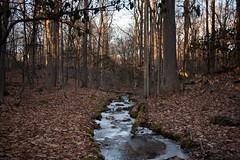 20180114 (Homemade) Tags: onatrupreserve nikon2470mmf28 nikkor2470mmf28 winter sunset ice westchestercounty preserve nature hike trail stream water lewisboro southsalem