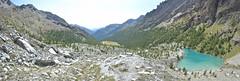 Lago Blu - Val D'Ayas (mettlog) Tags: mountain montagna verde foresta green forest landscape panorama vista veduta pini hiking trakking valle daosta italia italy greenwood wood alberi mombarone piemonte versante della cielo paesaggio albero legno erba