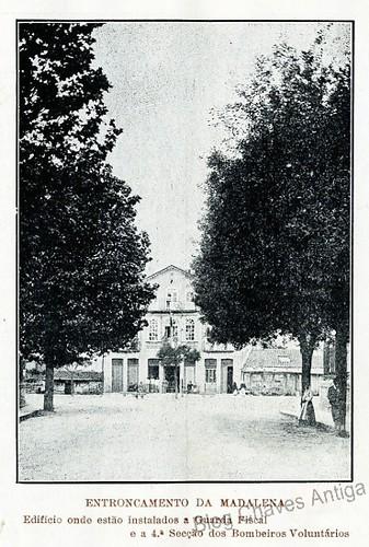 madalena1_1914