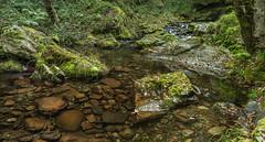 river of the waterfall Cioyo 3.)-2197 (dironzafrancesco) Tags: tamron fluss wasser slta99v natur reise ndfilter tamronsp2470mmf28diusd cascadadecioyo haida lightroomcc vegadeo principadodeasturias spanien es