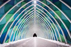 The Long Walk (David Izzo) Tags: niitykumpu sony a7riii espoo finland