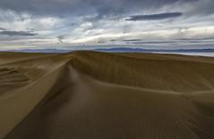 """Camí al far de """"El Fangar"""" per les dunes, _DSC4126 (Francesc //*//) Tags: dunes dunas duna dune sorra arena sable deltadelebre deltadelebro paisatge landscape paisaje natura naturaleza nature elfangar"""