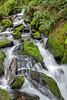 Winter Falls (Tom Fenske Photography) Tags: waterfall falls stream moss green ferns landscape nature wilderness