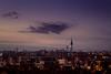 Skyline (sam.villaver) Tags: atardecer madrid sunset anochecer night skyline horizonte landscape paisaje sky cielo nubes clouds city ciudad nikon d3100 torre tower luces lights blue silueta world'sbestnikonshot