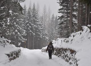Passeggiando in Val di Vizze