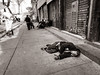 Hard life in Mexico city (eric_demers) Tags: mexico documentary inequality blackandwhite poverty streetphotography