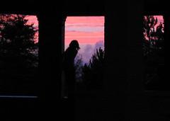through-the-bandstand_32063390_o