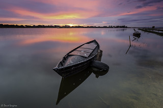 Albufera Light.