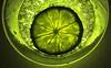 Macro Mondays - Citrus (PhilDL) Tags: citrus macromondays macro macrotextures closeup lime bubbles carbonated glass lightshade light hues contrast vibrance fluorescent