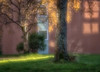 Day's End - Golden Hour (Anne Worner) Tags: building architecture shadows latedaylight goldenhour birch lensbaby velvet56 manualfocus manualfocuslens em5 olympus bergen norway anneworner