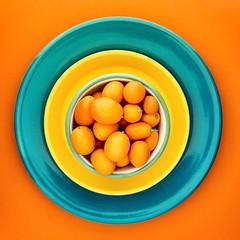 kumquats (auntneecey) Tags: kumquats fruit citrus orange 365the2018edition 3652018 day65365 06mar18