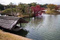 0110 秋景岡山後楽園