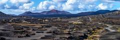 La Geria No. 2 - Lanzarote, Canary Islands (dejott1708) Tags: la geria lanzarote panorama landscape canary islands vineyard vine timanfaya national park montañas del fuego