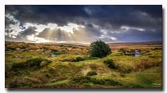 Sun Fingers (jeremy willcocks) Tags: sunfingers dartmoor devon ukjeremywillcocksc2018fujixpro2xf1024mm moors teignever clapperbridgre tee colour landscape clouds scene view moor
