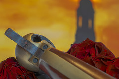 The dark tower by Stephen King (HMM!) (ralfkai41) Tags: makro thedarktower roses rosen macro macromondays gun stephenking tower derdunkleturm turm geschichte rolandandthedarktower buchtitel revolver novel