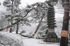 Edo Winter Wonderland (Rekishi no Tabi) Tags: tokyo japan happoen minatoku winter snow matsu pine japanesegarden stonepagoda
