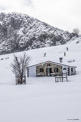 Ganguren en Arraba (Jabi Artaraz) Tags: jabiartaraz jartaraz zb euskoflickr ganguren arraba refugio nieve deporte surf montaña sport