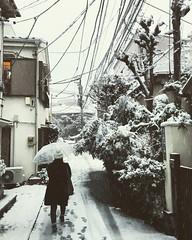 Tokyo Snow (kirainet) Tags: tokyosnow
