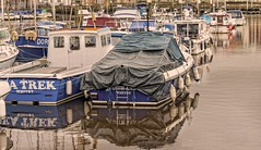 Whitby: Wrapped up for winter. (jack cousin) Tags: whitby yorkshire river riveresk marina mooringpost coast shore seashore harbour harbor port waterfront jetty walkway tourism travel touristattraction resort holiday vacation daytrip popular bridge buoy reflection boat boats fishingboat trawler yacht dinghy mast masts sail sails radar antennae arial tiedup moored mooring tethered rope cable tarpaulin covered