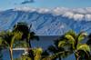 (B.L. Scherliss) Tags: maui mauihawaii hawaii