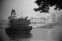 Hong Kong on Film (Komatsu 1000) Tags: 125 6minutes 50mmf1leicanoctiluxe60 ilfordhp5 iso400 leicam3 rodinal