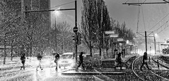 Snow storm (Leonegraph) Tags: storm snow panasonicgx80 panasonic1235mmf28 mft micro43 microfourthirds hanover monochrome einfarbig bw sw blanco negro bn schwarz weis black white leonegraph streetphotographer public öffentlich leben lebendig story urban photography spontan spontanious candid unaware unposed personen sitaution street 2017 europe europa germany deutschland drausen gehen gx80 hannover