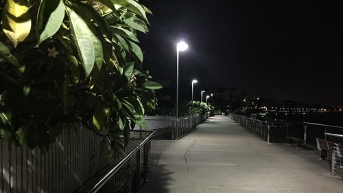 Brisbane River walk at night, New Farm, Queensland