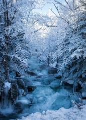 Still the River Flows (SOO-CK) Tags: mountwashington tuckermanracinetrail whitemountains ngc river snow ice