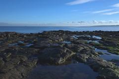Whitley Bay Beach (CEWWtyke) Tags: whitleybay coast beach rockpools sea northsea sky bay landscape shore water rock ocean seascape countryside rocks nature tyne wear uk england outdoor britain greatbritain plage