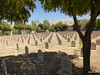 005 Halabja Cemetery (4).jpg (tobeytravels) Tags: kurdistan iraq halabja helebce chemicalattack saddam poisongas sarin mustardgas tabun monumentofhalabjamartyrs