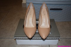 Ladies size 8 Sergio Bari NUDE Beyonce 3 3/4 high heel leather shoes (womensfashionista) Tags: 3 34 8 bari beyonce heel high ladies leather nude sergio shoes size