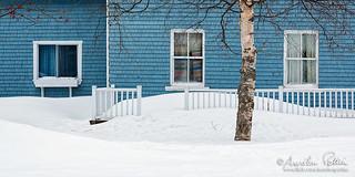 Hors saison, trois fenêtres et un tronc