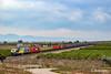 333-381 (G. Berenguer [ ō*]) Tags: 333 3333 333381 continentalrail locomotive railway railroad teco train mercancías diesel opdr