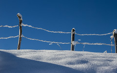 Clôture en hiver (Fence in winter) (Larch) Tags: snow sky lines hiver winter hautesavoie france minimalisme minimalism barbelé barbedwire ombre shadow matin morning texture
