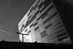 . (Erich Hochstöger) Tags: architektur architecture sw bw monochrome gegenlicht backlight silhouetten silhouettes linz austria