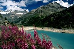 Place Moulin - 6 (anto_gal) Tags: aosta valdaosta montagna trekking escursione escursionismo alpi valpelline lago diga artificiale placemoulin dia diapositiva