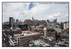 New York City (Doyle Wesley Walls) Tags: lagniappe 7710 city metropolis urban buildings newyorkcity sky clouds photograph doylewesleywalls windows rooftops building skyline skyscraper architecture