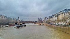 162-Paris décembre 2017 - la Seine, le Pont de la Tournelle, Notre-Fame de Paris (paspog) Tags: paris france décembre 2017 seine