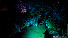 Enchanted Gardens 2017 - 177 (mchenryarts) Tags: arcen dunkelheit entertainment event events farbe fotojournalismus kasteeltuinen laternen licht lichtinszenierung lichtspektakel niederlande parkleuchten photojournalism schloessgaerten show garten laser lasershow
