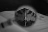 Viens plus près (Come closer) (l'imagerie poétique) Tags: limageriepoétique poeticimagery digitalphotography loupe magnifyingglass bokeh hmbt papillon butterfly