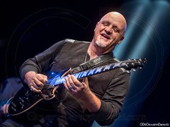 Frank Gambale_4820 (GD-GiovanniDaniotti) Tags: bluenotemilano bluenote blue note milano stage show concert musicphotographer musicphoto frank gambale boca marco luciani alex evans mike shapiro nick kellie guitar guitarist voice keyboards drumm hazz blues band rock fusion soul funk daniotti photoconcert