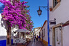 Splash of colour in Obidos (Marian Pollock) Tags: obidos portugal bougenvillia flowers purple people street streetlights potplants colourful europe sunshine windows cobblestones white