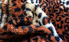 My heart will go on (angelasmorato) Tags: heart coração formas tecido cobertor estampa tigre myheartwillgoon flickrfriday
