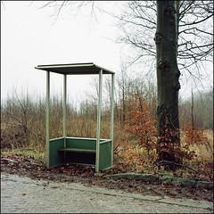 Bus Stop - Kodak Porta 100T (magnus.joensson) Tags: sweden skåne eslöv trollenäs winter rolleiflex 35 zeiss tessar 75mm kodak porta 100t exp c41 6x6 medium format 85b filter countryside