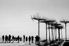 silhouettes & trees (christikren) Tags: trees kahlenberg vienna contrast terrace austria blackwhite bw christikren noiretblanc österreich panasonic people tourist view wien shadow snow winter man woman couples silhouette streetphotography street abstract schnee sky