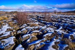 Clints and Grykes in the frost. (rustyruth1959) Tags: ice frost outdoor rockformations landscape glacialretreat glacialerosion erosion limestone rock grykes clints clintsandgrykes glacier limestonepavement greatdoukpot greatdoukcave ingleborough chapelledale yorkshiredalesnationalpark northyorkshire yorkshire england alamy uk tamron16300mm nikond5600 nikon fissures shrubs hills clouds sky mountains shadows snow tree frosty cold winter ferns