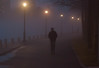 A Walk in the mist (vern Ri) Tags: fog winter rooseveltisland newyork