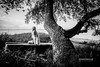 From last Summer (check4newton) Tags: summer girl blond tree ef 40 1740mm fjord porträt baum beautiful woman park gras