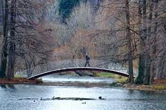 Tineretului Park (Dumby) Tags: tineretului bucharest românia landscape bridge sector4 alpha5000 sony winter iarnă bucurești